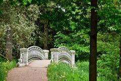 Pont en pierre dans la forêt près du St Petersbourg Image stock