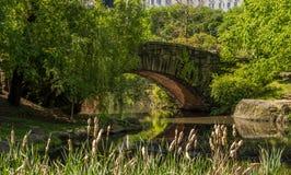 Pont en pierre dans le Central Park image libre de droits