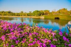 Pont en pierre en parc avec le lac sur le ciel bleu Photographie stock libre de droits