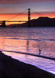 Pont en porte d'or, San Franci Photographie stock libre de droits
