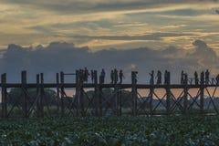 pont en teck Photographie stock libre de droits