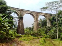 Pont en train Photographie stock libre de droits