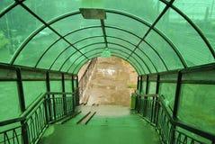 Pont en verre vert image libre de droits