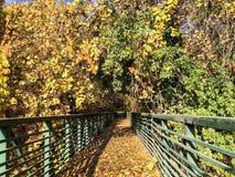 Pont enchanté par endroits sacrés pendant l'automne photos stock