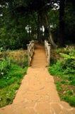 Pont et chemin Photographie stock libre de droits