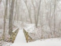 Pont et traînée par des bois d'hiver Image stock
