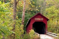 Pont II en fleur d'haricot Photo stock