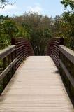 Pont incurvé par rouge Image stock