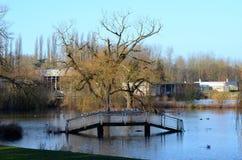 Pont inondé Photo stock