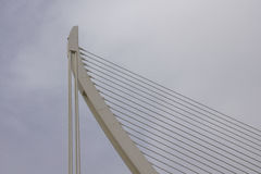 Pont l`Assut de l`or, the bridge in the City of Arts and Science Stock Photo
