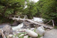 Pont le long de la traînée à Torres del Paine au parc national de Torres del Paine, Patagonia chilien, Chili photos libres de droits