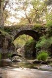 Pont médiéval sur la rivière de montagne Images libres de droits