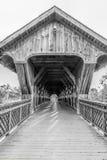 Pont monochrome Photo stock