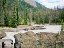 Pont naturel chez Yoho National Park Image stock