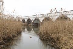 pont Neuf-troué en Hongrie image libre de droits