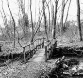 Pont noir et blanc Images libres de droits