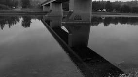 Pont noir et blanc au-dessus de la rivière de cerfs communs rouges banque de vidéos