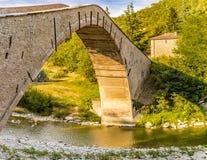 pont soutenu par le porc de simple-envergure Images libres de droits