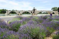 Pont St-Benezet à Avignon sur des Frances Image stock