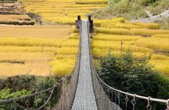 Pont suspendu accrochant de corde au Népal Photo stock