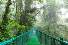 Pont suspendu dans la forêt tropicale Images stock