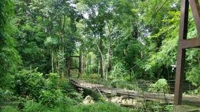 Pont suspendu en bois au point de vue de Pompee Image stock