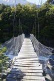 Pont suspendu en parc national de Torres del Paine, Patagonia, Chili Photo libre de droits