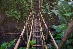Pont suspendu menant à un autre côté dans la jungle Photographie stock libre de droits