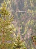 Pont suspendu piétonnier en gorge Photos libres de droits