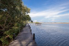 Pont vers la mer avec le ciel gentil Photographie stock libre de droits
