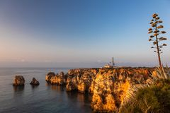 Ponta da Piedade in the morning light royalty free stock image