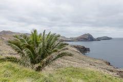 Ponta de Sao Lourenco Fotografía de archivo