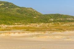 Ponta DOS Ingleses i Costao gör den Santinho stranden arkivbild