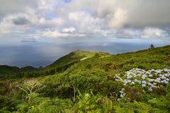 Ponta Ruiva (弗洛勒斯海岛)亚速尔群岛,葡萄牙 免版税库存图片