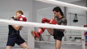 Pontapé do roundhouse do treinamento de Kickboxers no ringside no boxe de treino no clube da luta video estoque