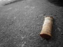 Pontas de cigarro na terra Imagens de Stock