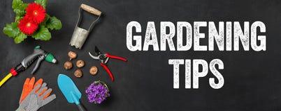 Pontas de jardinagem imagens de stock