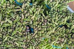Pontas do aspargo Imagem de Stock Royalty Free