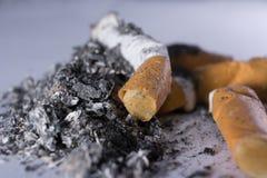 Pontas e cinza de cigarro Foto de Stock Royalty Free