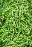 Pontas verdes frescas do aspargo decoradas no mercado semanal Fotos de Stock