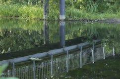 Ponte in acqua Immagini Stock
