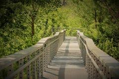 Ponte al fiume Cumberland Nashville Immagini Stock Libere da Diritti