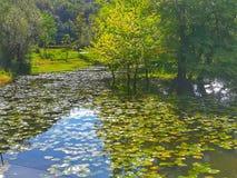 Ponte al giardino dell'Eden attraverso il fiume dei sogni fotografie stock libere da diritti
