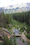 Ponte - Alberta - Canada fotografia stock libera da diritti