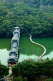 Ponte antiga da floresta Imagens de Stock Royalty Free