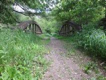 Ponte arqueada velha Foto de Stock Royalty Free
