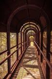 Ponte arrugginito del ferro con la copertura nella foresta Immagine Stock