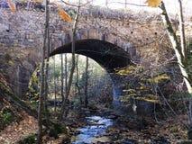 A ponte através da floresta Imagens de Stock