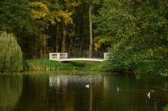 A ponte através do lago Fotos de Stock