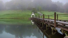 Ponte attraverso il lago Immagini Stock
